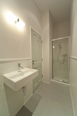 1st floor shower/toilet